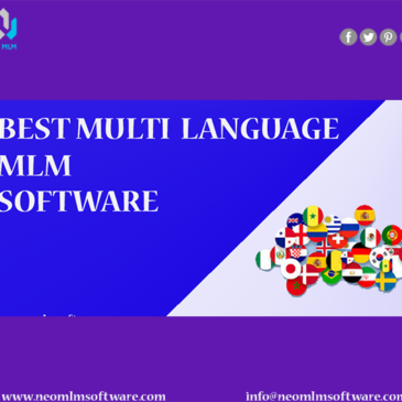 Multi-Lingual Support System in MLM
