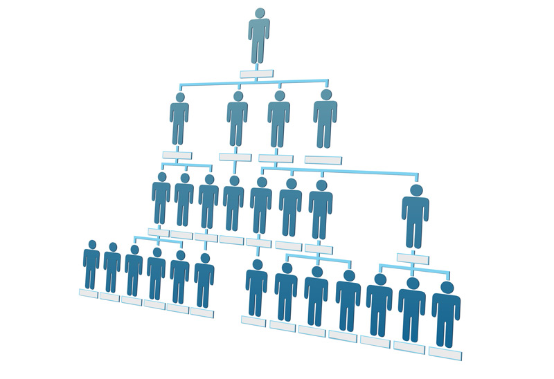 multilevel-marketing-network